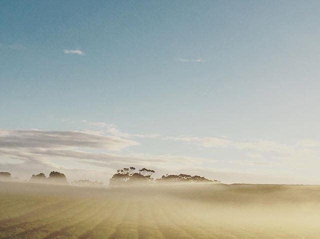 This mornings fog #boatharbour #wynyardandsurrounds #goodshotnina #tasmaniasnorthwest #tasmania #sistersbeachcommunity