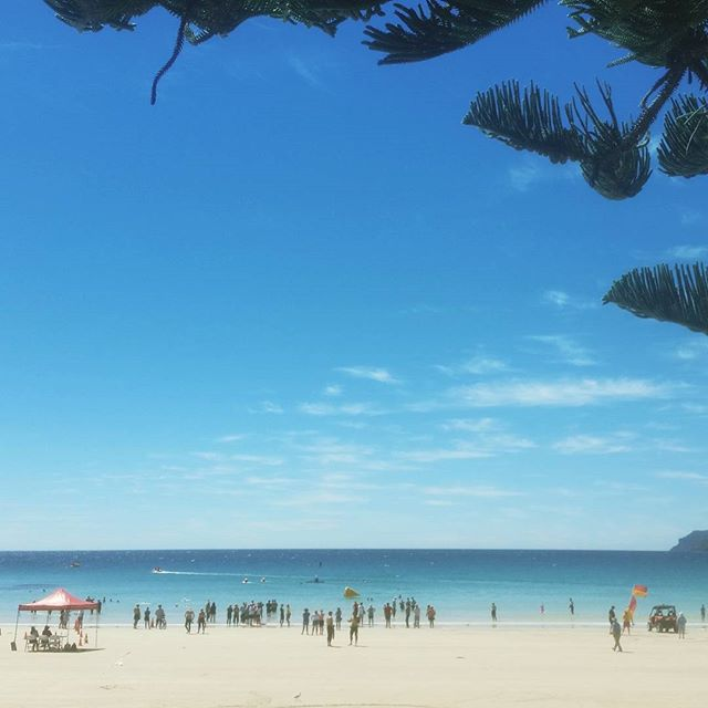 Boat Harbour Beach, perfect day for #oceanswimseries