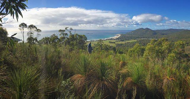 Exploring #rockycapenationalpark #sistersbeach #northwesttasmania #sistersbeachcommunity#tasmaniasnorthwest #winterintassie