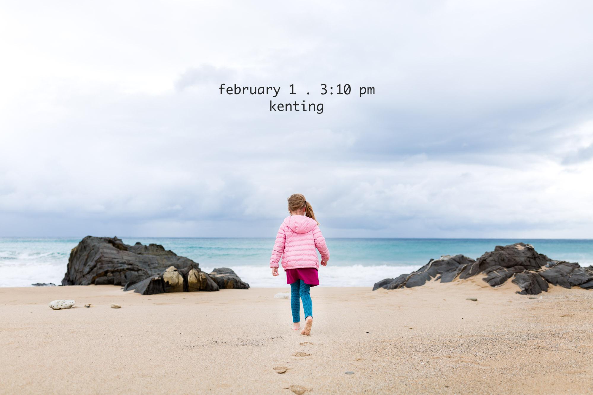 32-365-2017-Feb1-Web-3