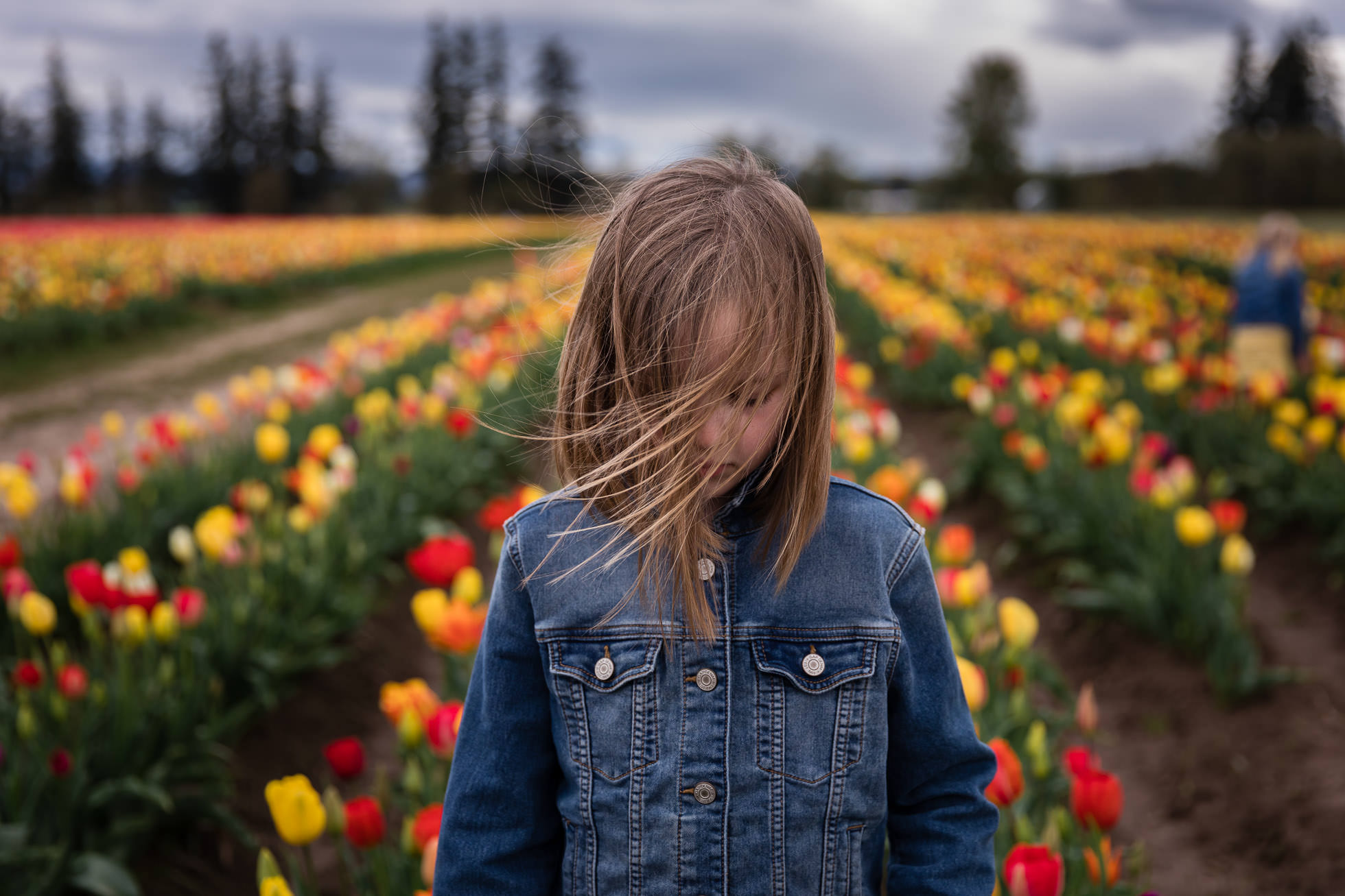 girl with windblown hair wearing jean jacket centered in front of multi colored tulip field by rebecca hunnicutt farren portland oregon childrens photographer