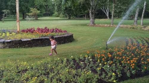 Running through the Niagara Parks Botanic Garden - and enjoying the sprinklers - was a great way for our toddler to blow off steam on our road trip.