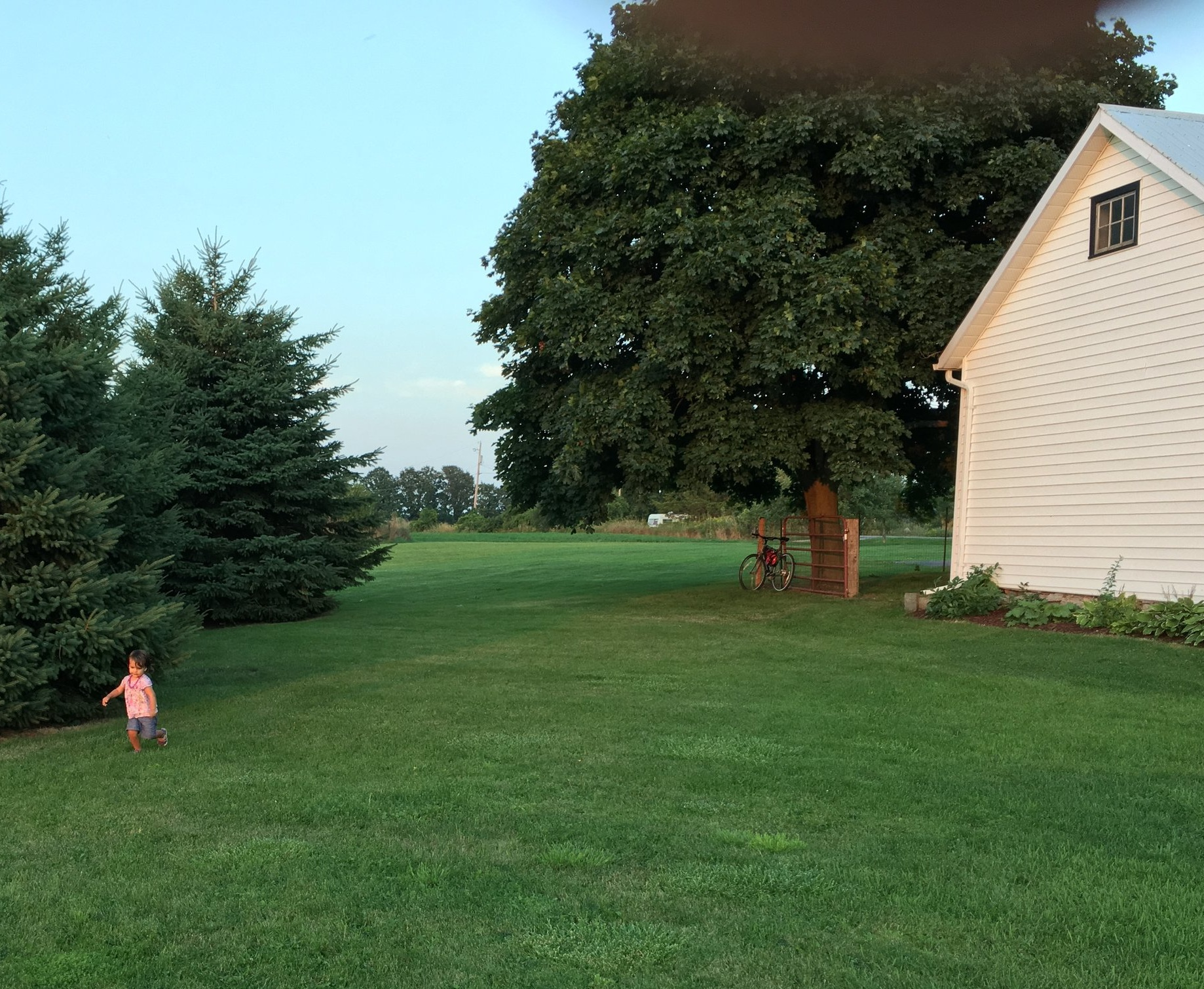 Large yard of kid-friendly Prince Edward County (PEC) rental. #visitpec
