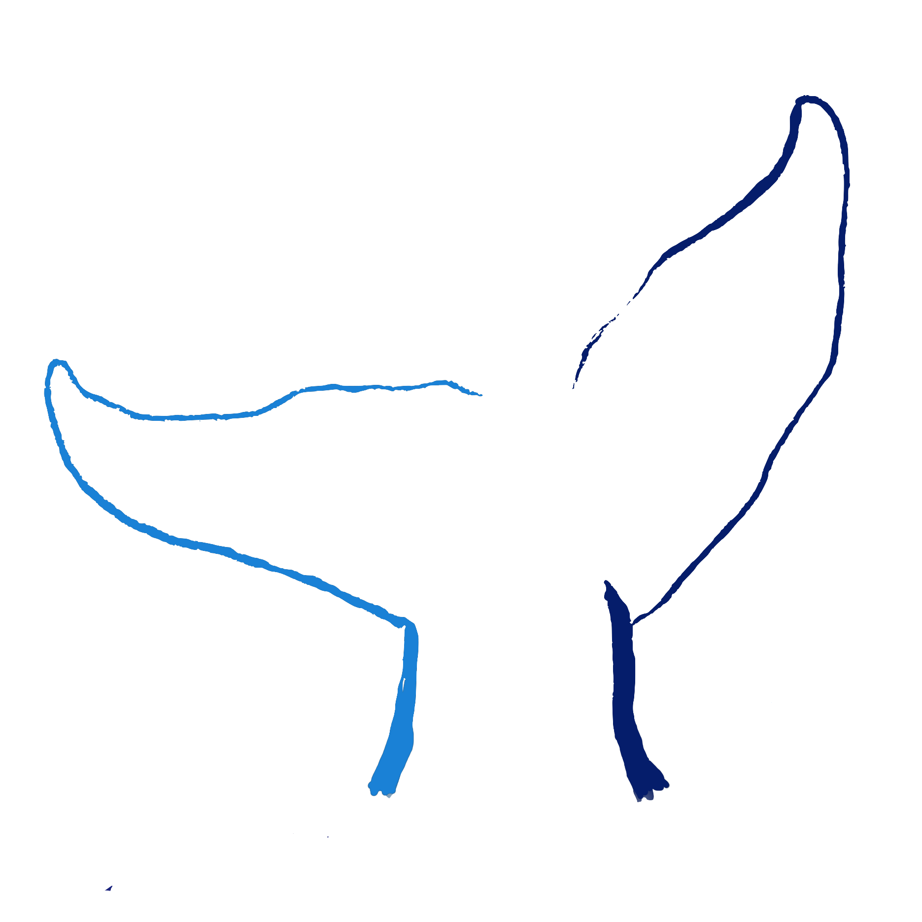 VVMC Logo Blues Tail Only Transparent.png