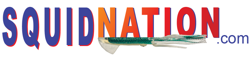 logo_squidnation.png