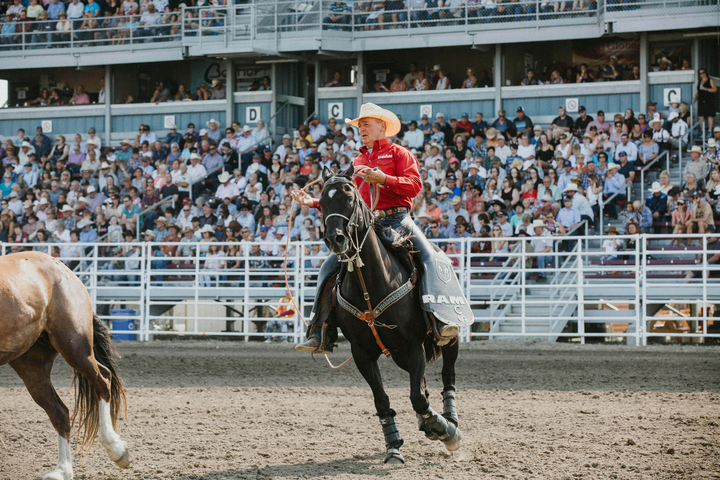Calgary-kristina-cajipe-photographer-commercial-professional-best-corporate-reasonable-photo-pictures-building-travel-stampede-events-(7).jpg