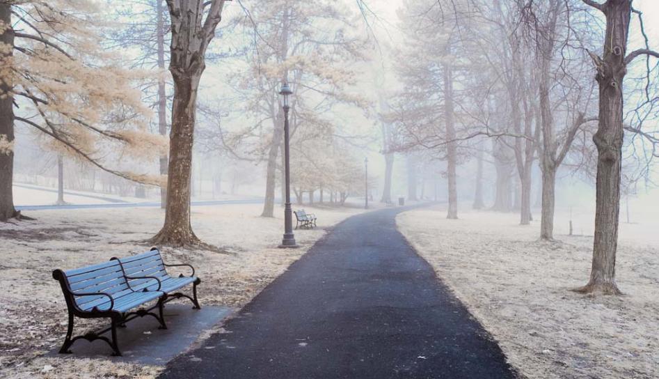 Anderson Park, Photo courtesy Eric Delmar