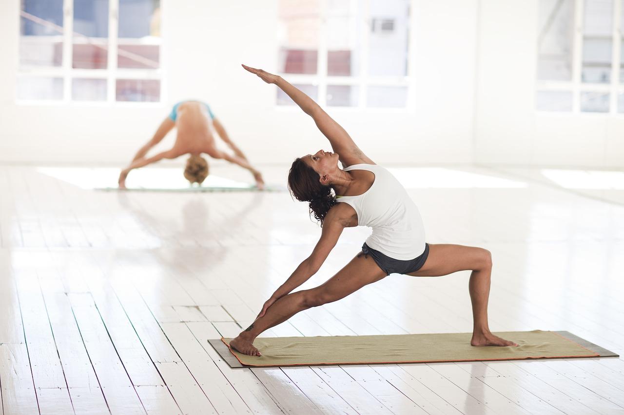 Asana-Pose-Hatha-Yoga-2959226.jpg