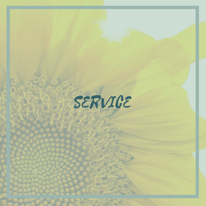 Service workbook cover.png