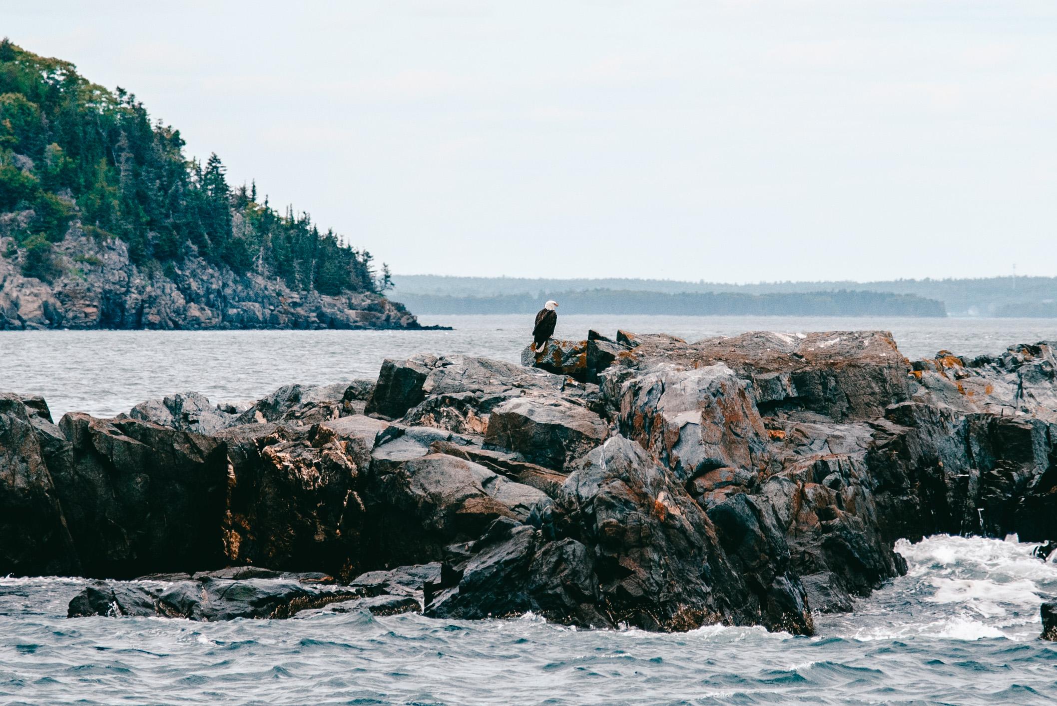 Maine-41.jpg