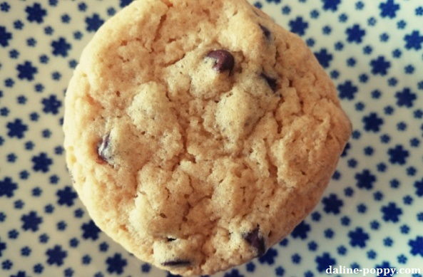 cookies gros plan