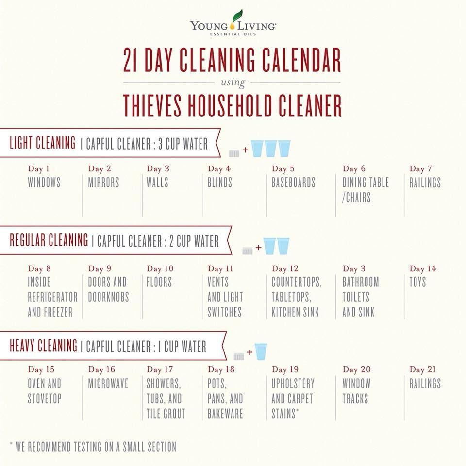 thieves 21 days cleaning calendar.jpg