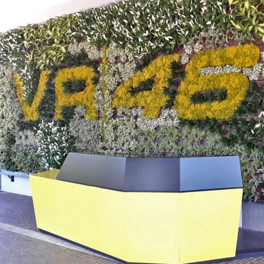 VR46.jpg