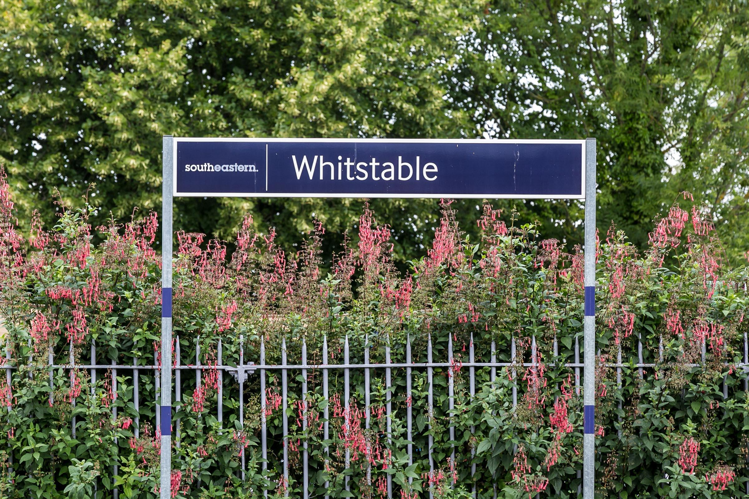 TMH_Whitstable_Web-107.jpg