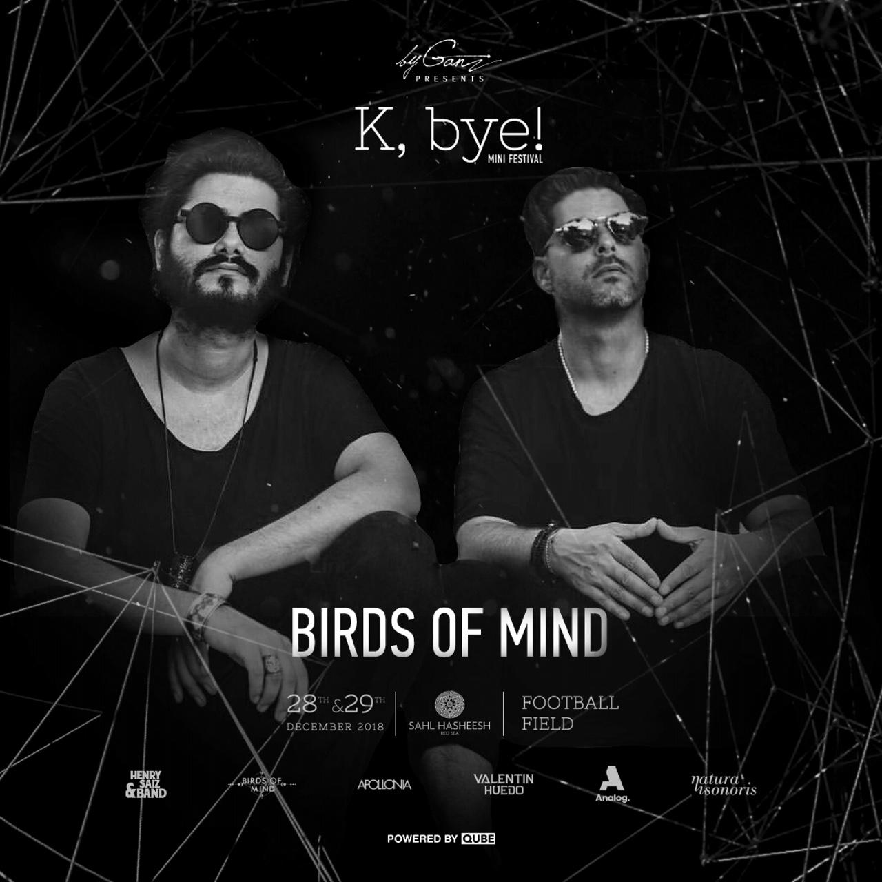 K,bye! Weekend Sahl Hasheesh Egypt Birds of Mind byganz 2018