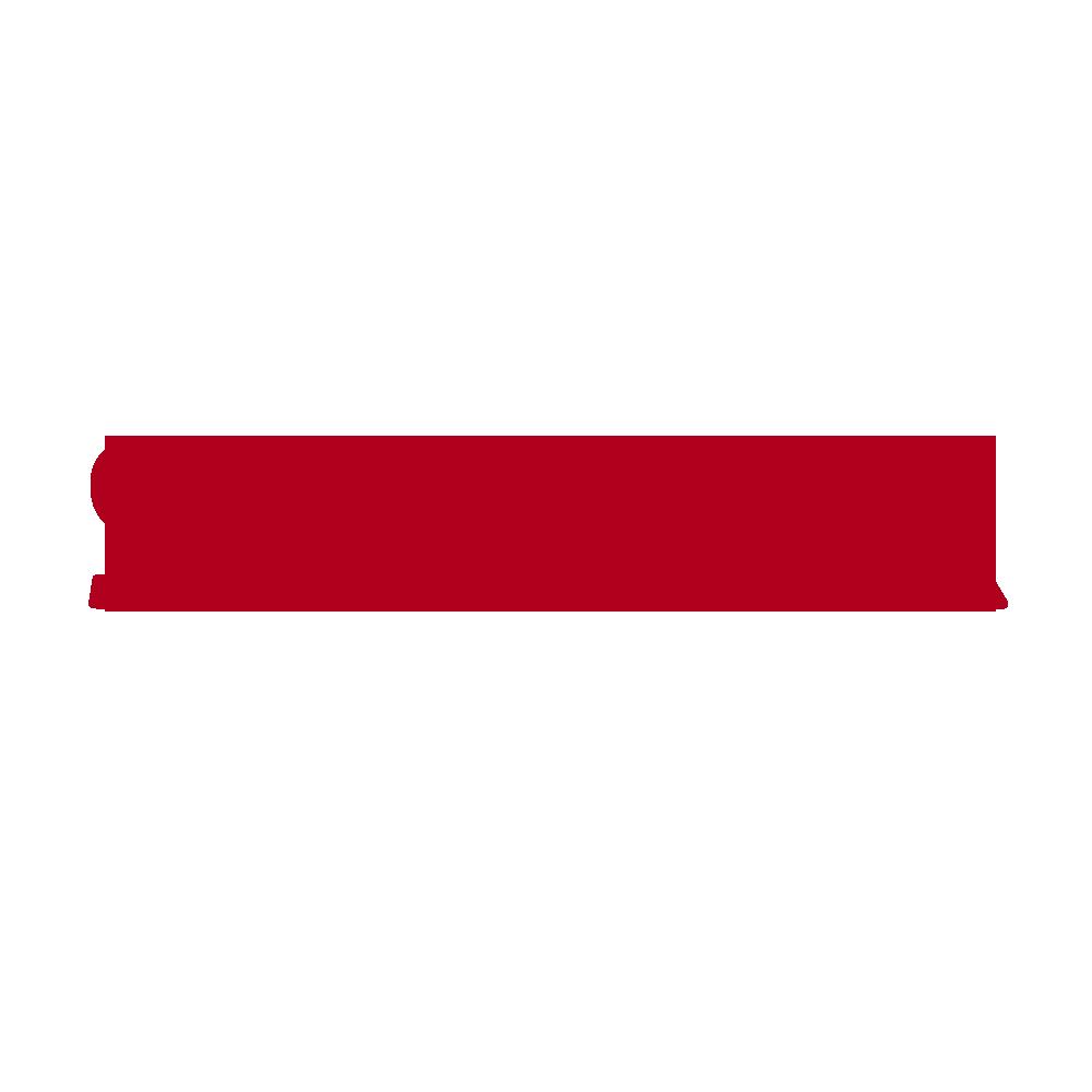 SRG SSR   SWITZERLAND   The Swiss public broadcasting cooperation is a non-profit organization operating on four regional cooperation: SRF (German Switzerland), RTS (French Switzerland), RSI (Italian Switzerland), RTR (Romansh).