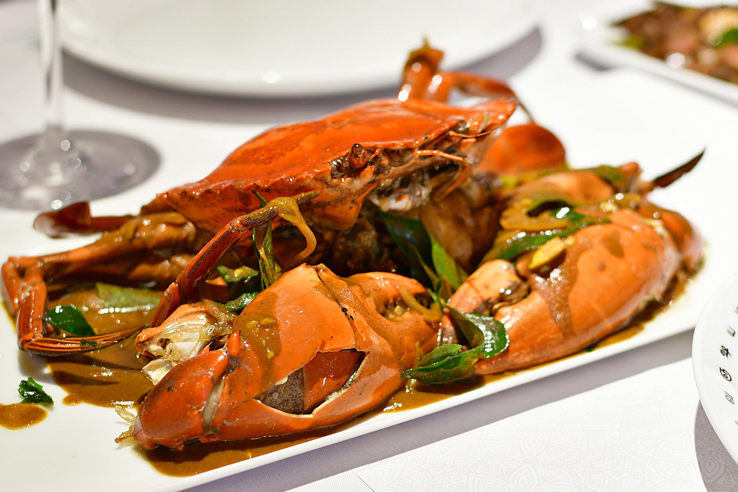 Serendib Negombo Crab.jpg