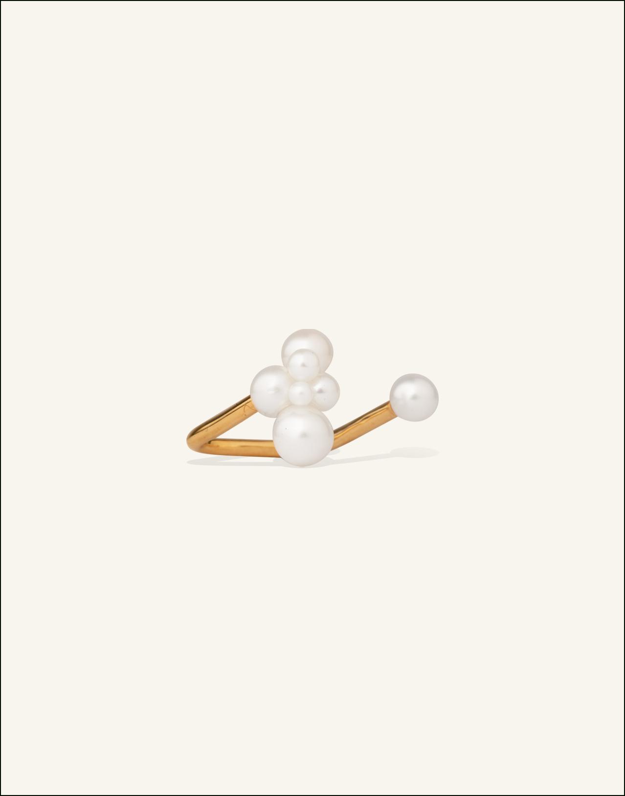 Completedworks-Ring-Winter-s-Gaze-2-1.jpg