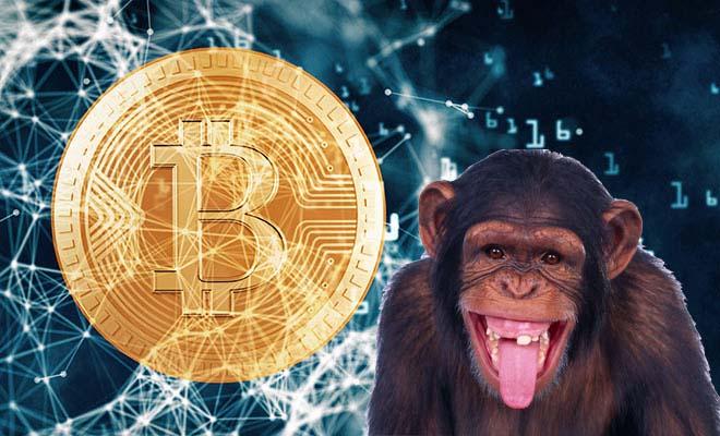 Bitcoin-Monkey.jpg