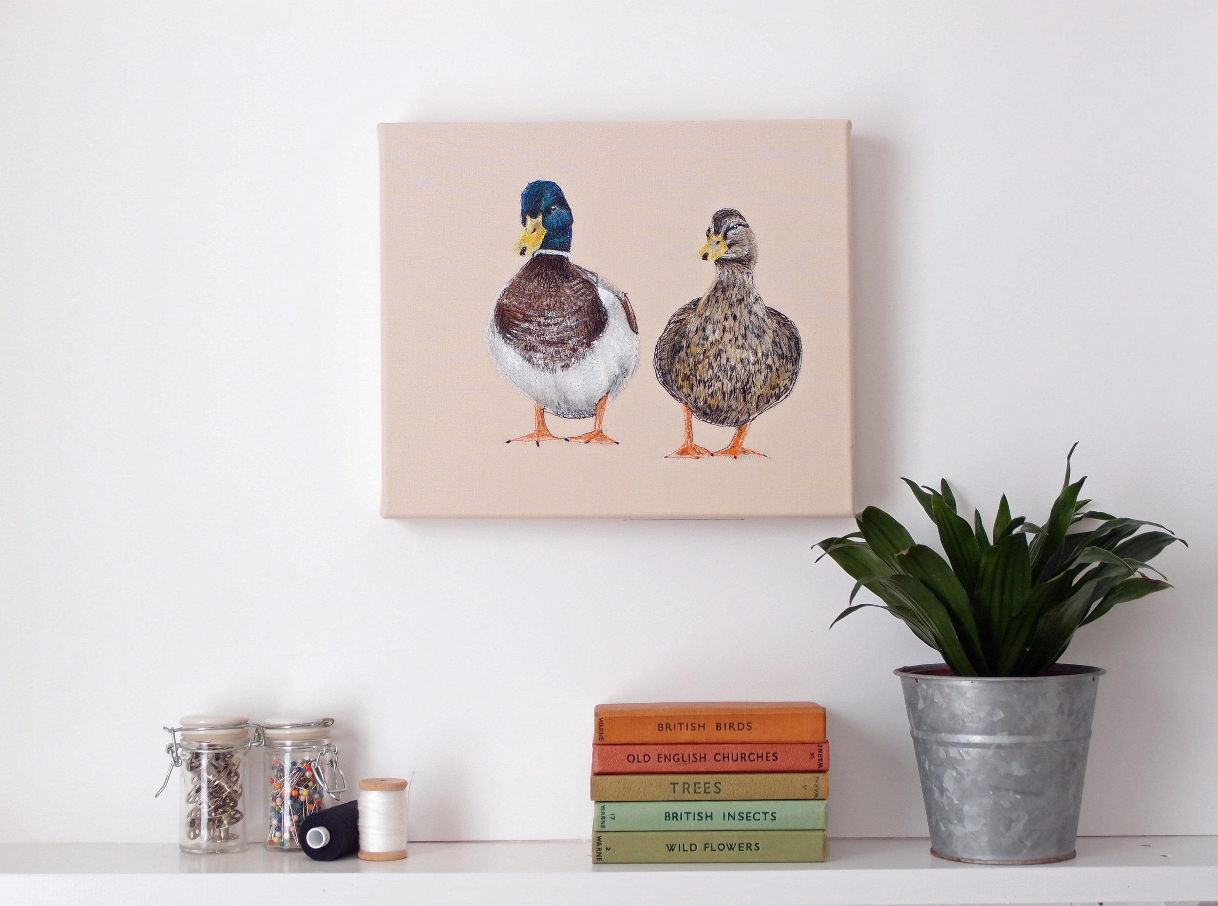 Ducks Main.jpg