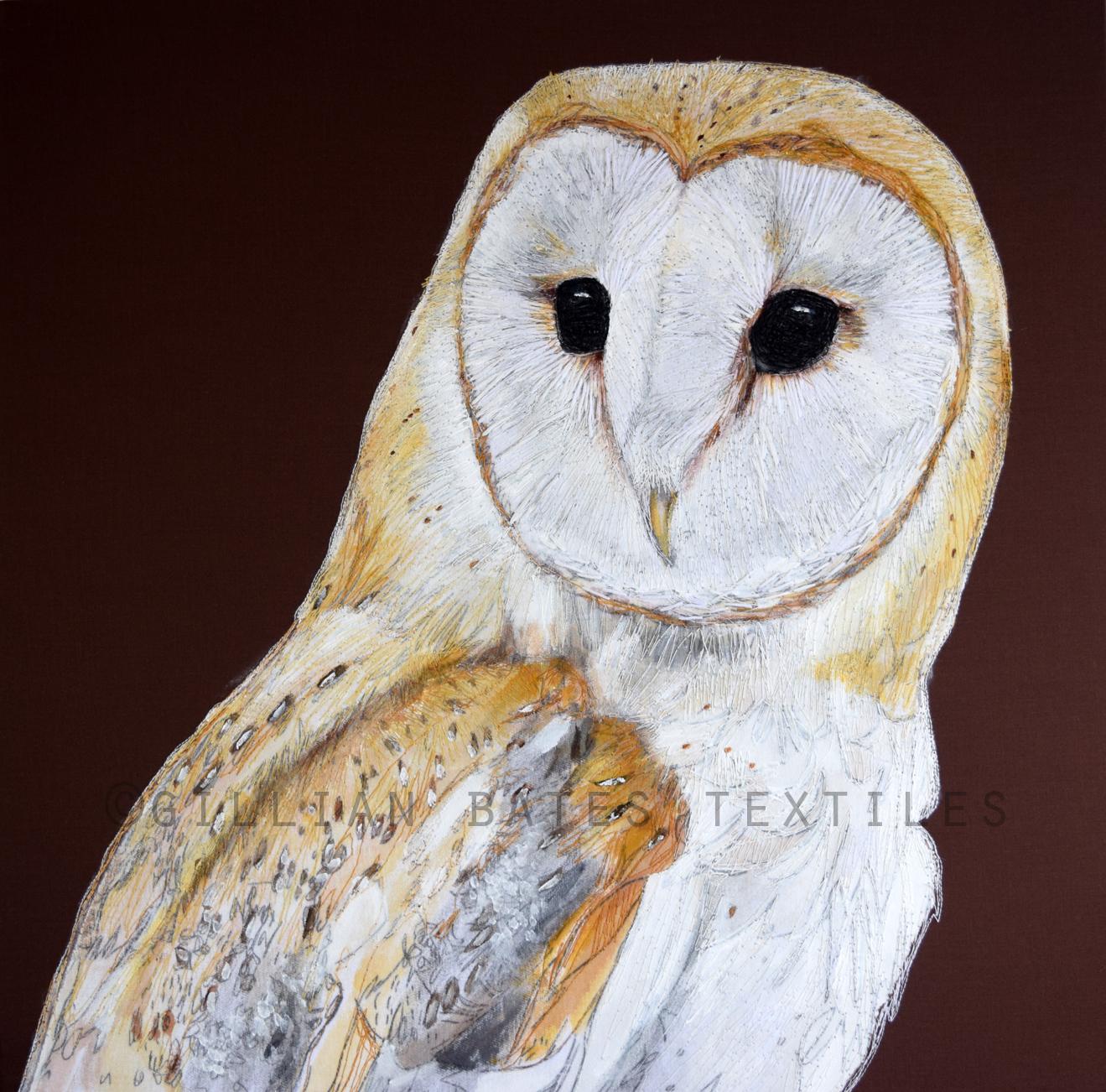 CA Barn Owl Full WEB.jpg