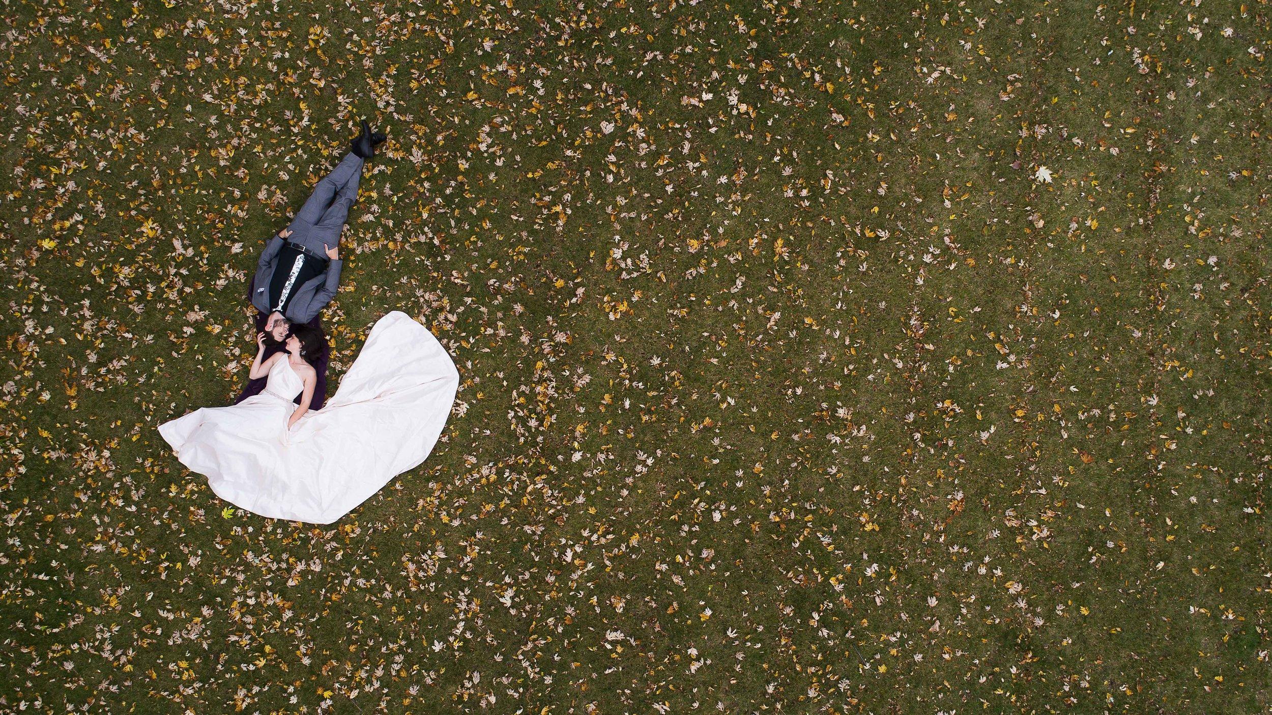 Drone photos-7.jpg