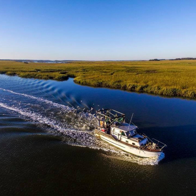 Beaufort-Boat.jpg