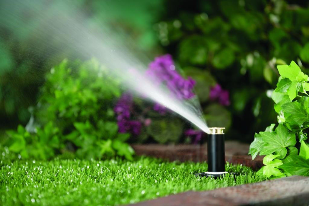 irrigation2.jpg