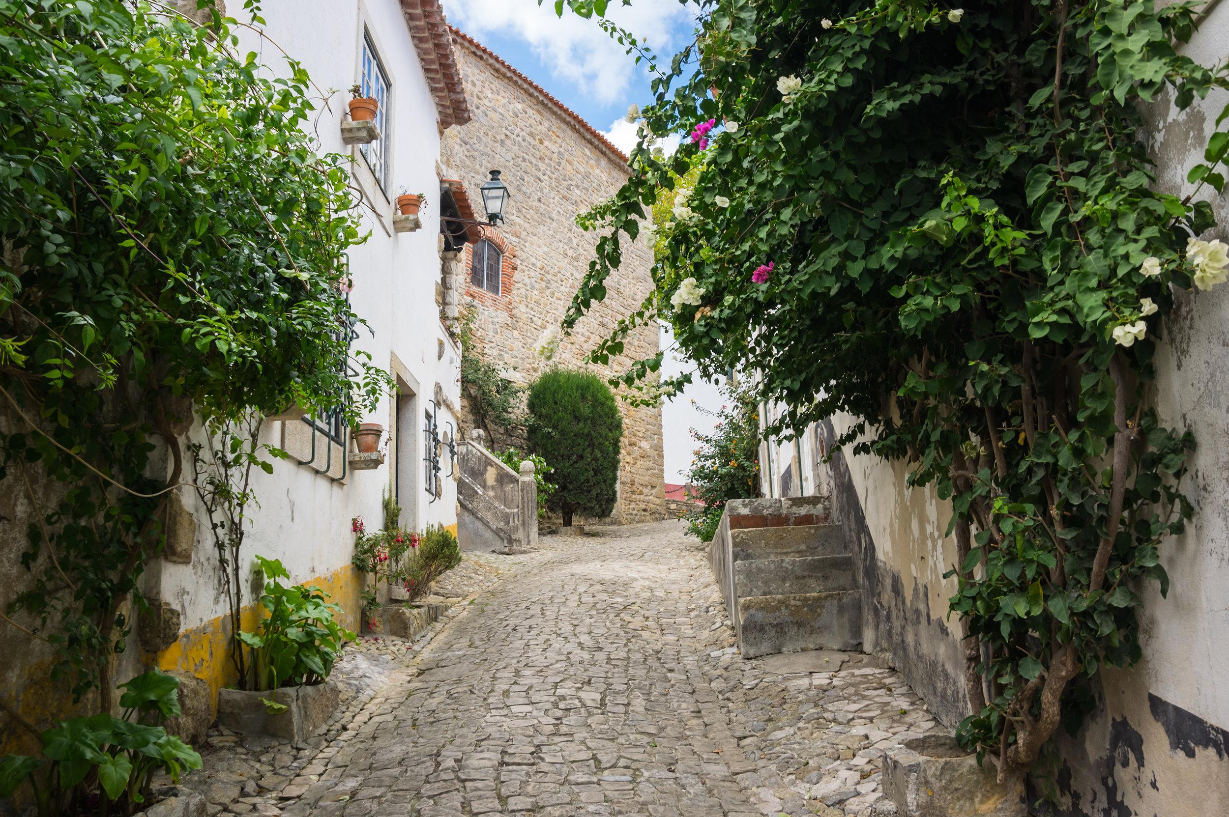 portugal_obidos_bigstock--161482943.jpg