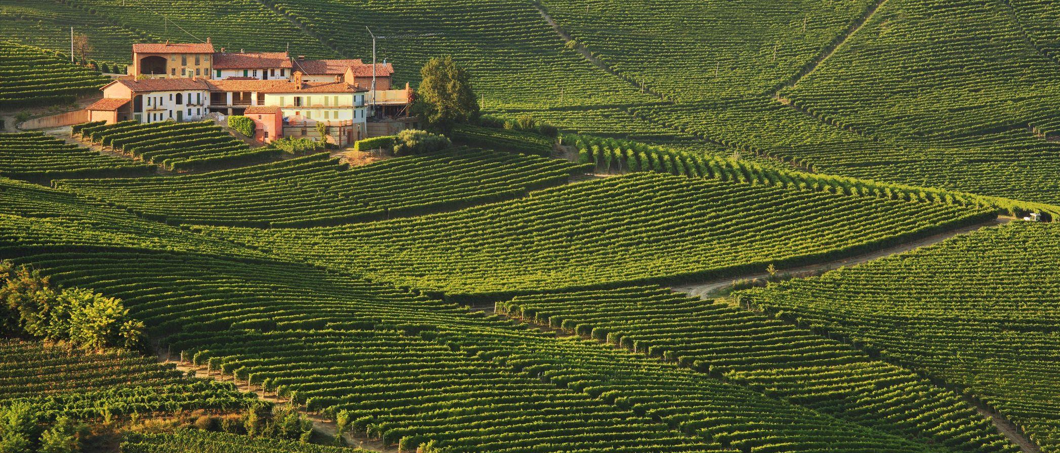 Piemonte for livsnytere - 3 netter/4 dager - Weekend