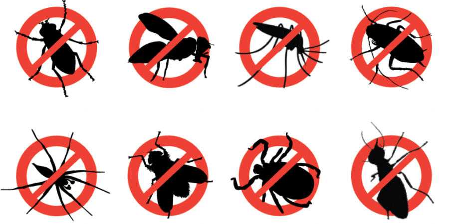 insect_control.png
