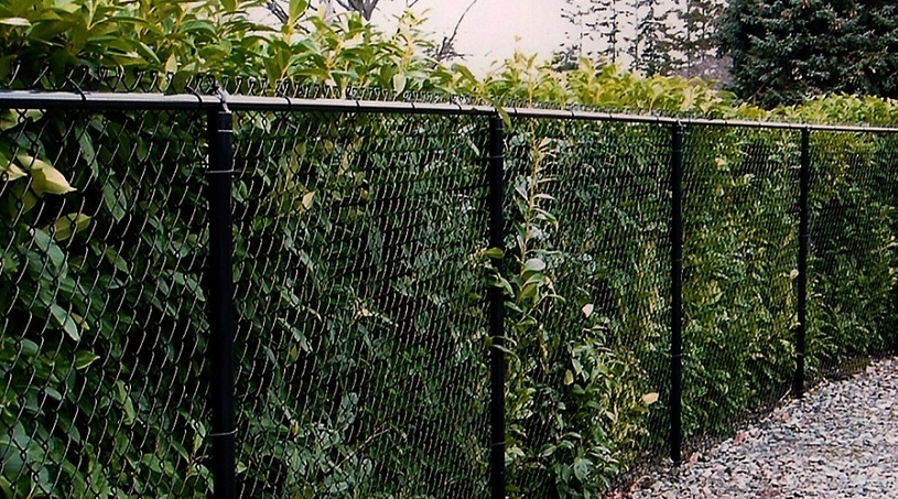 Black-Chain-Link-Fence