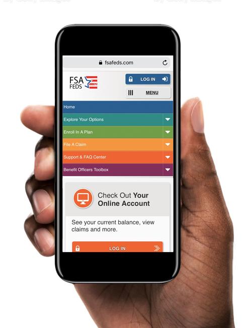 FSAFEDS Website | Mobile Display