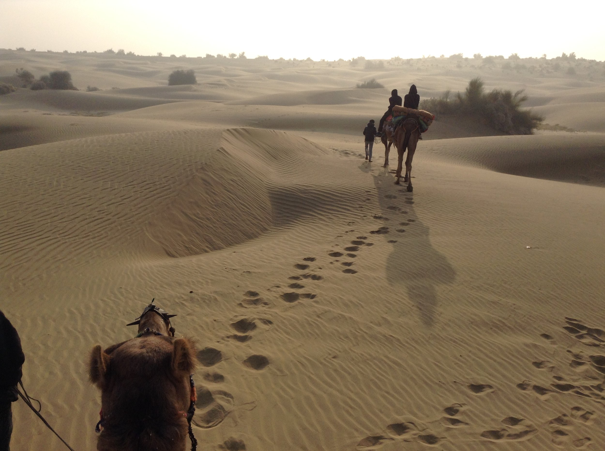 IMG 0548 - Coisas que deixamos pelo deserto ou coisas que aprendi no deserto.