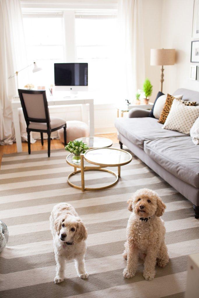 Everygirl Home Tour 4 - O decor de uma das casas mais compartilhadas no Pinterest