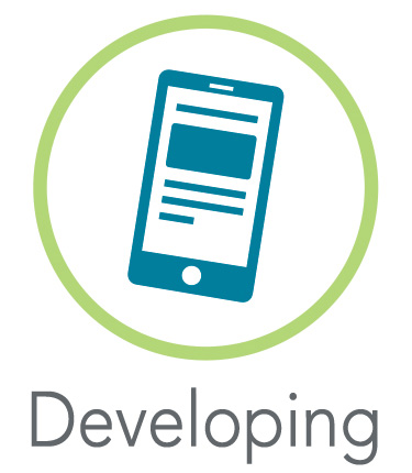 Developing Websites Icon
