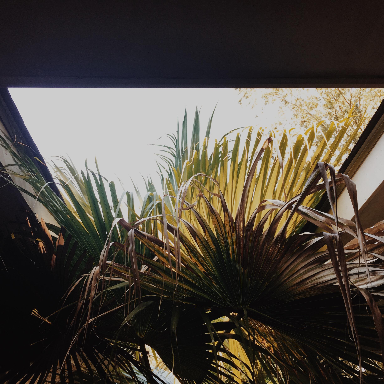 Photo Sep 08, 4 51 56 PM.jpg