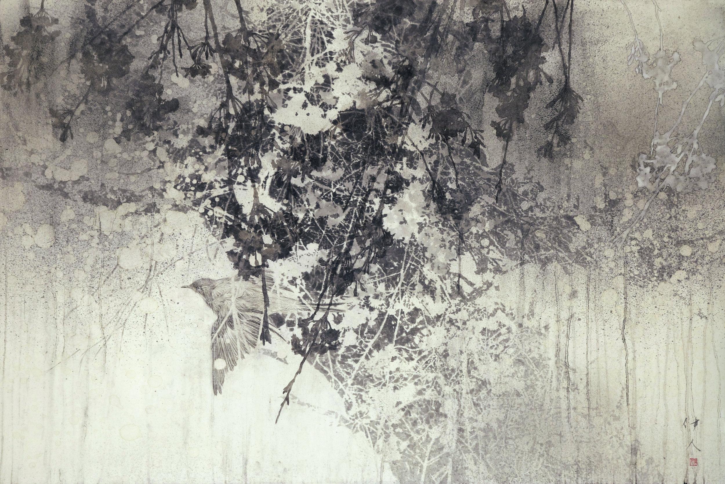 Yoshihito Kawase 'Cherry Blossoms' 2015