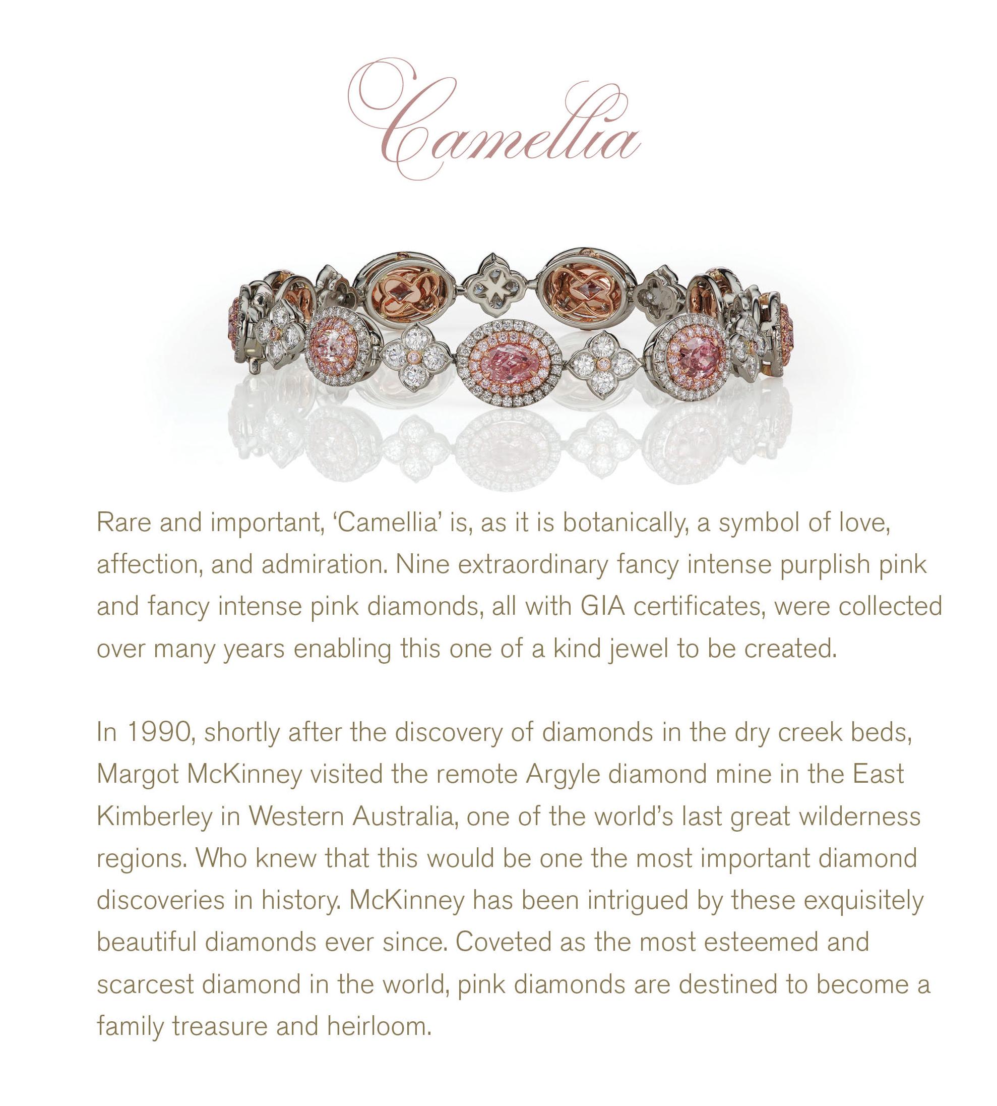 Camellia 1.png