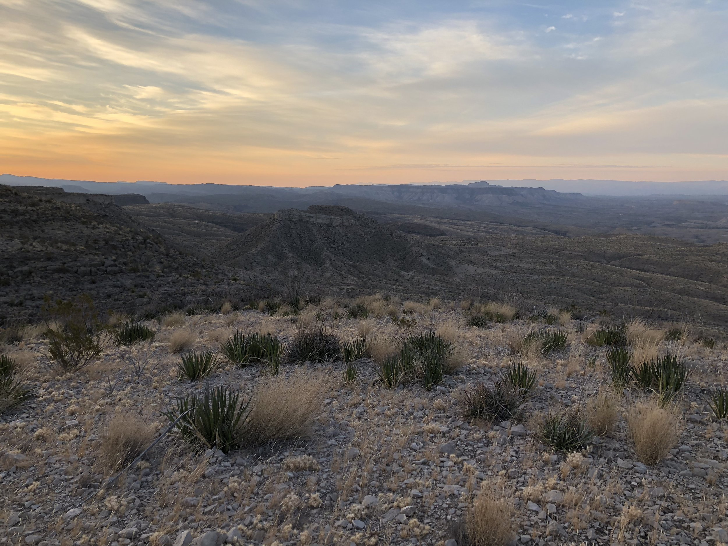 Support - The Big Bend Region is home to the largest tracks of Public land in Texas. Support the organizations that protect it.