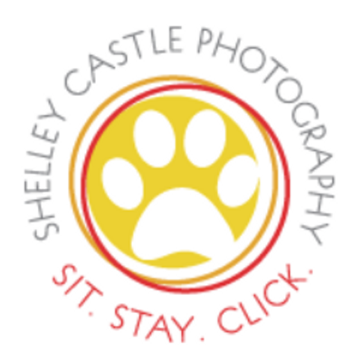 ShelleyCastleLogoSquare.png