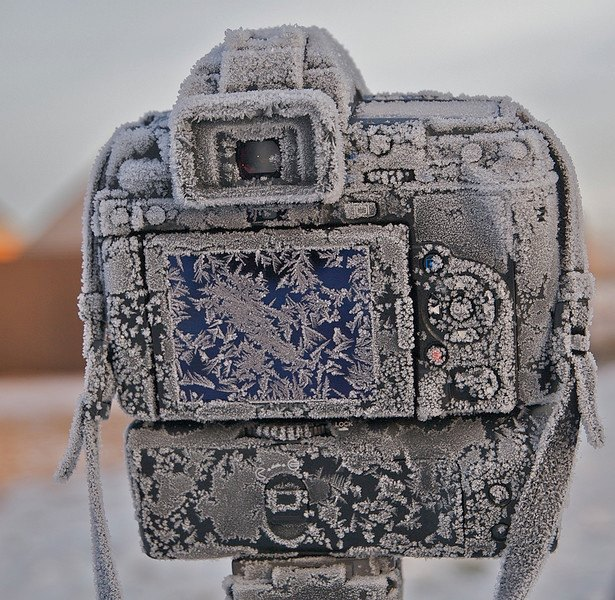 The Camera - In the year 2525