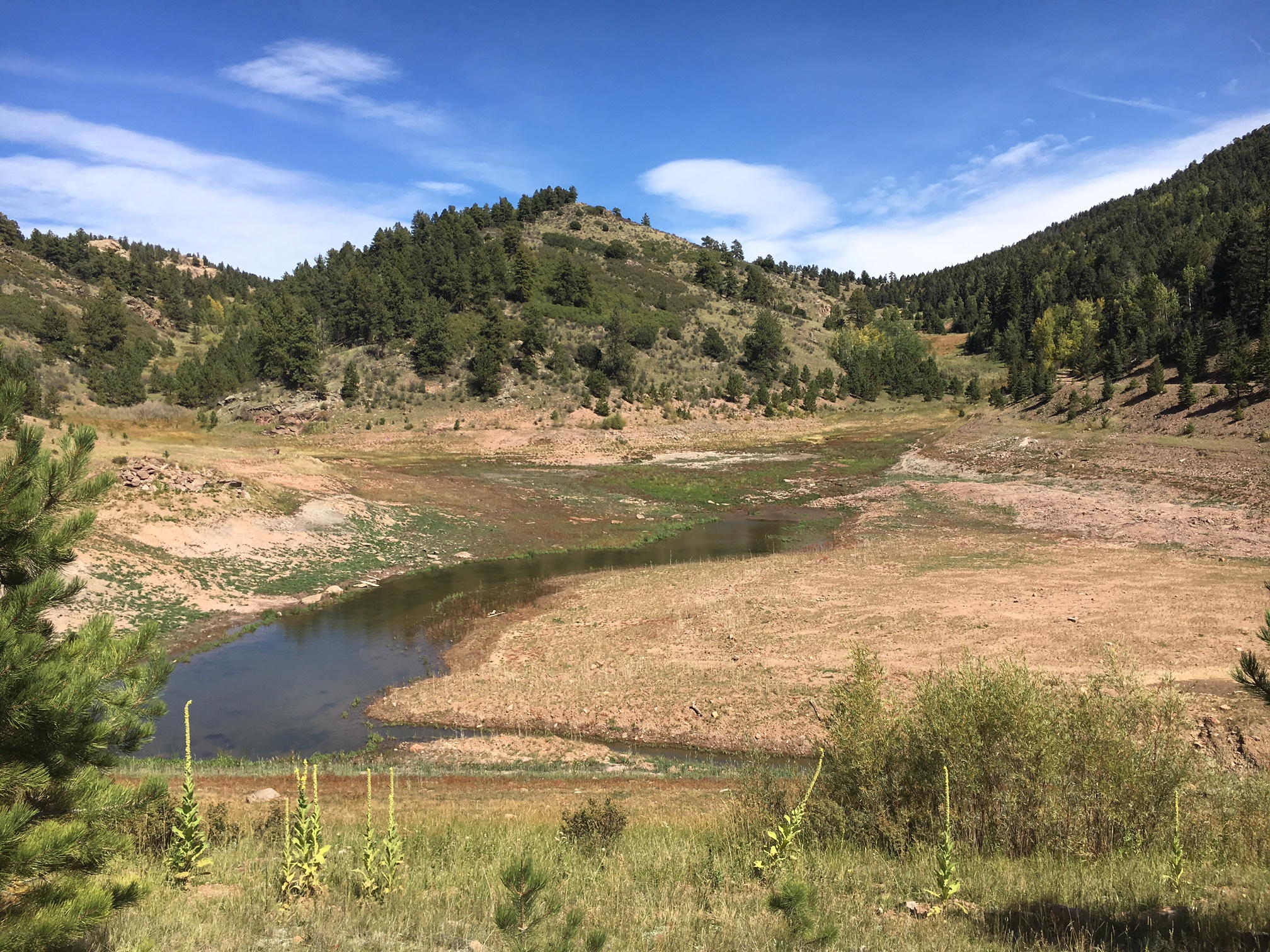 Riss Reservoir East - On an adjacent ranch to Riss North and Riss South, this project also required the breaching of a large earthen dam and restoration of the lake bottom. Twelve acres of native revegetation was designed to enhance upland, wetland, and stream habitat.