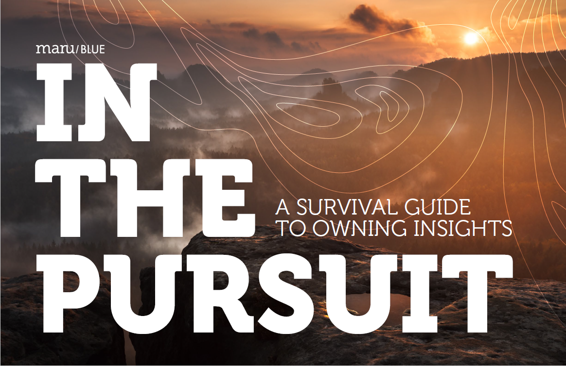 in the pursuit cover image.png