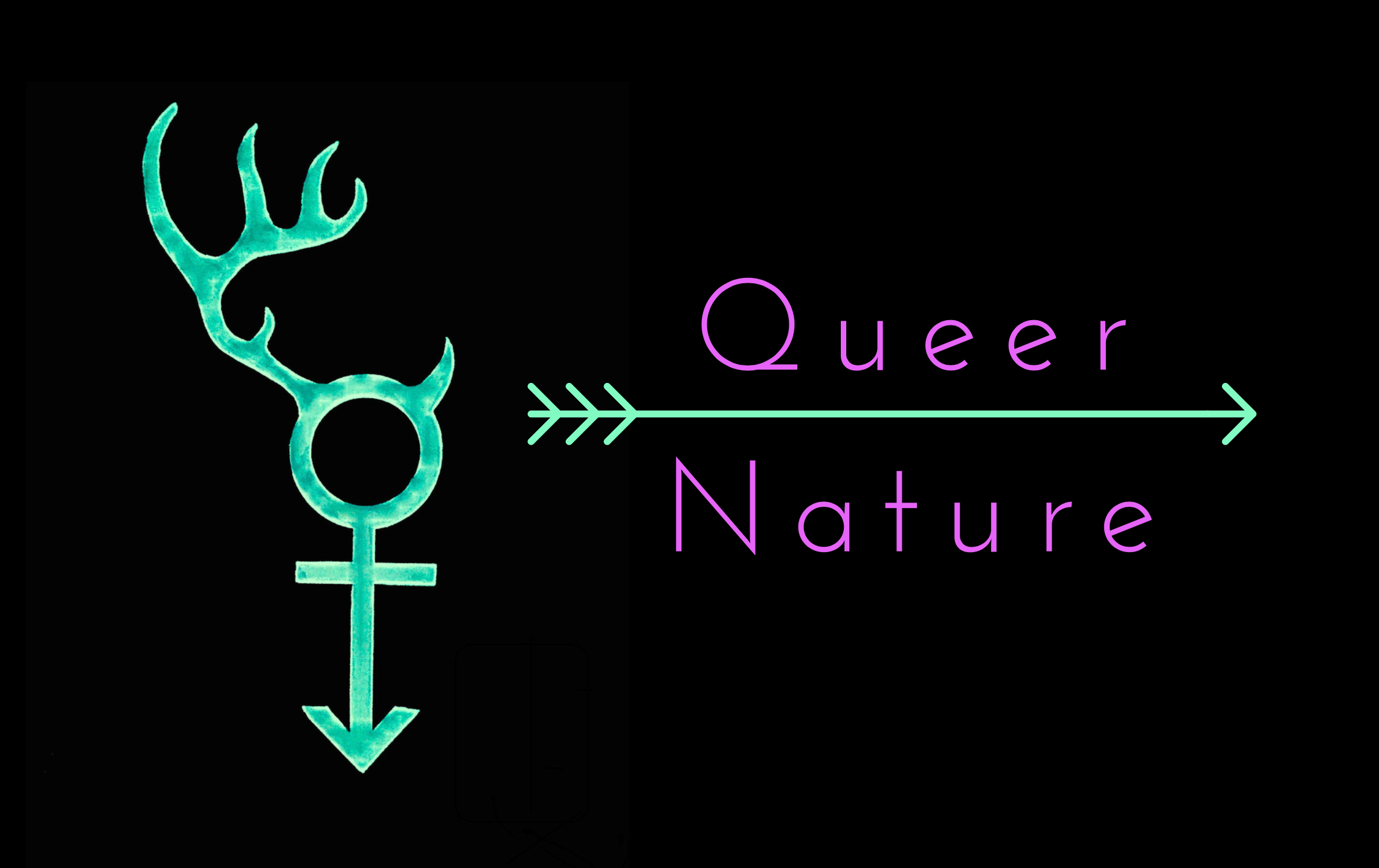 QNLogo.png