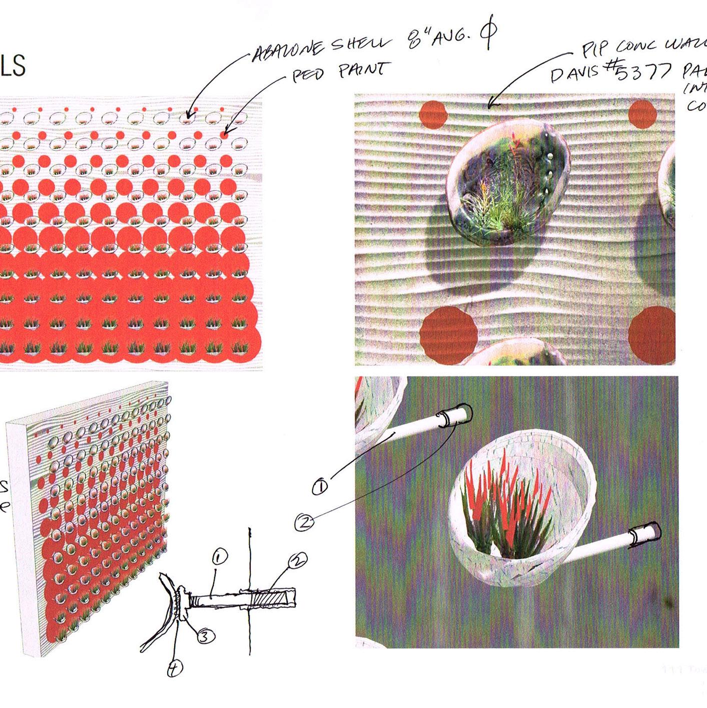 Abalone-Living-Wall-(2).jpg