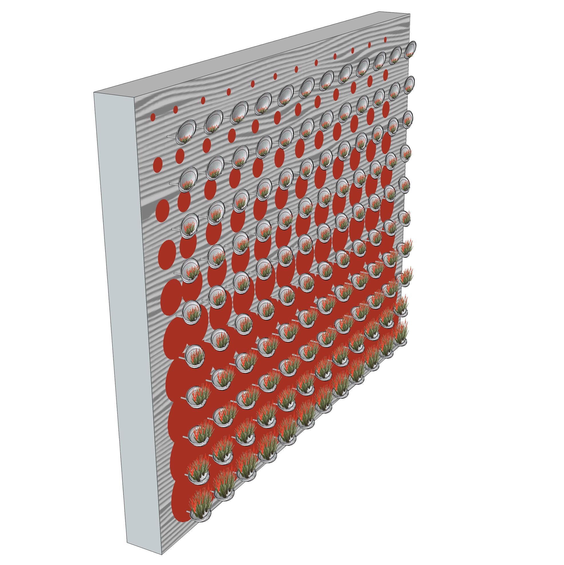 Abalone-Living-Wall-(3).jpg