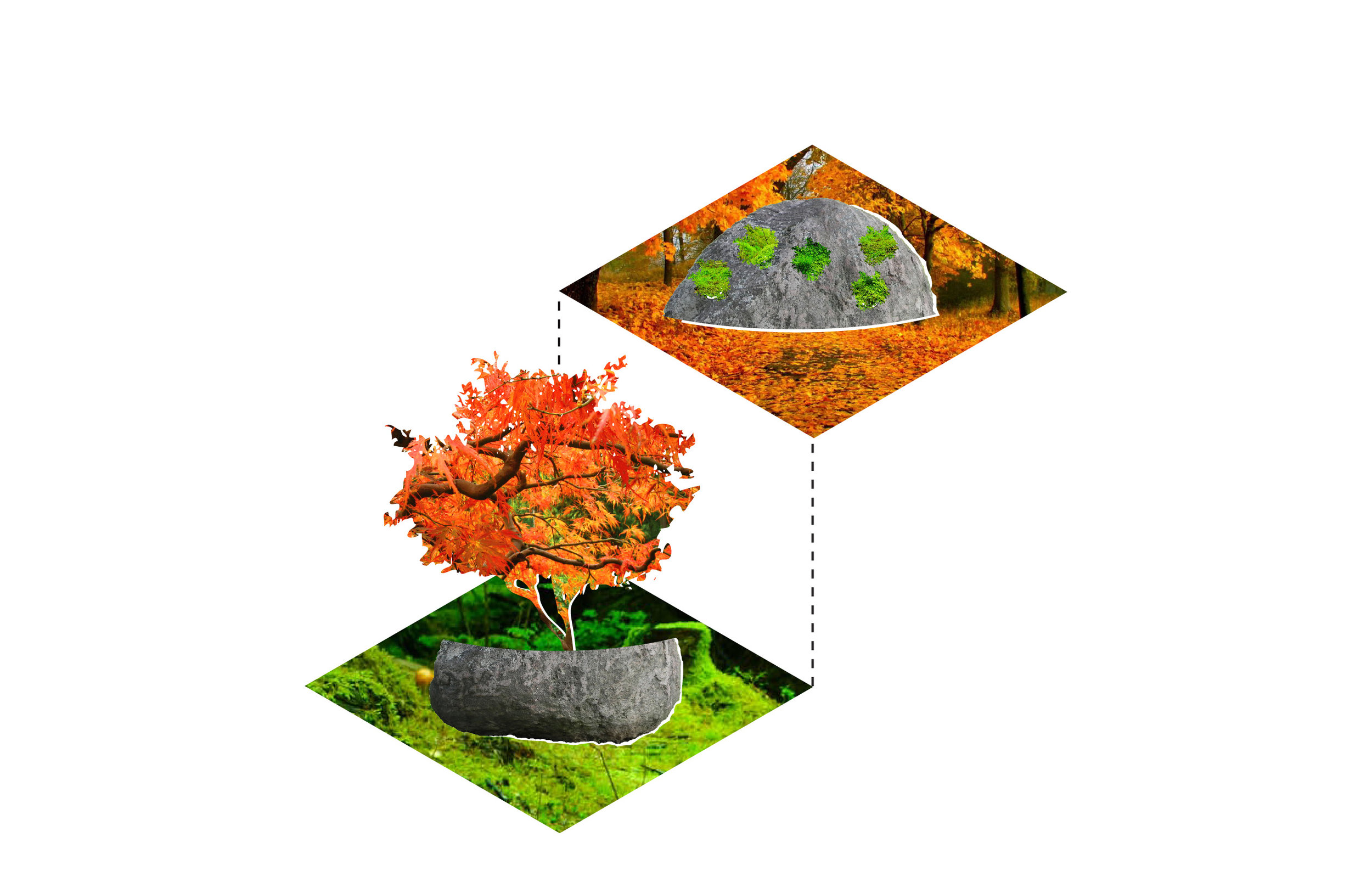 WIP_Pier-70_(2)-boulder_spring-fall_up-down-01.jpg