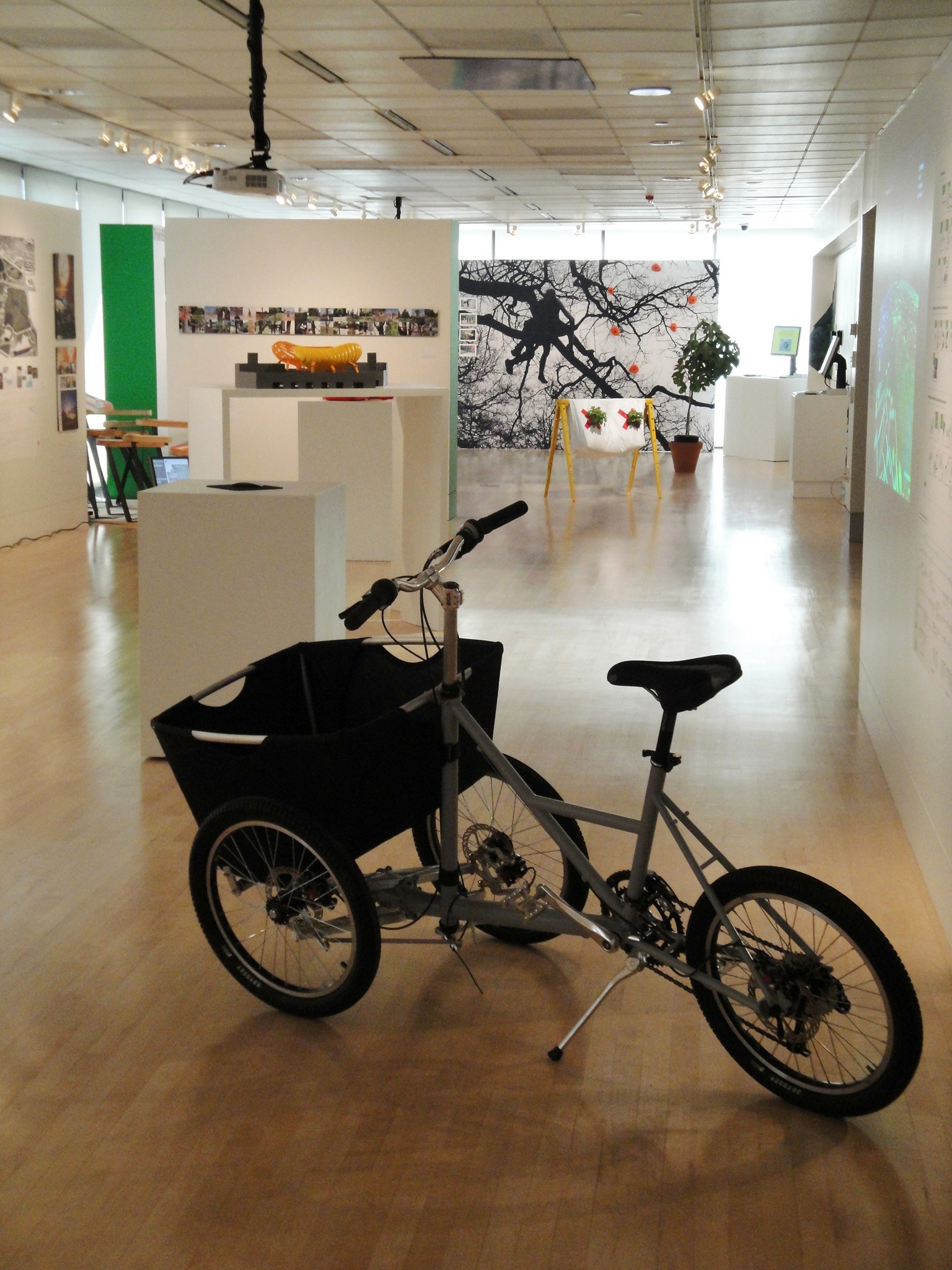 BiodiverCity Exhibition (11).jpg