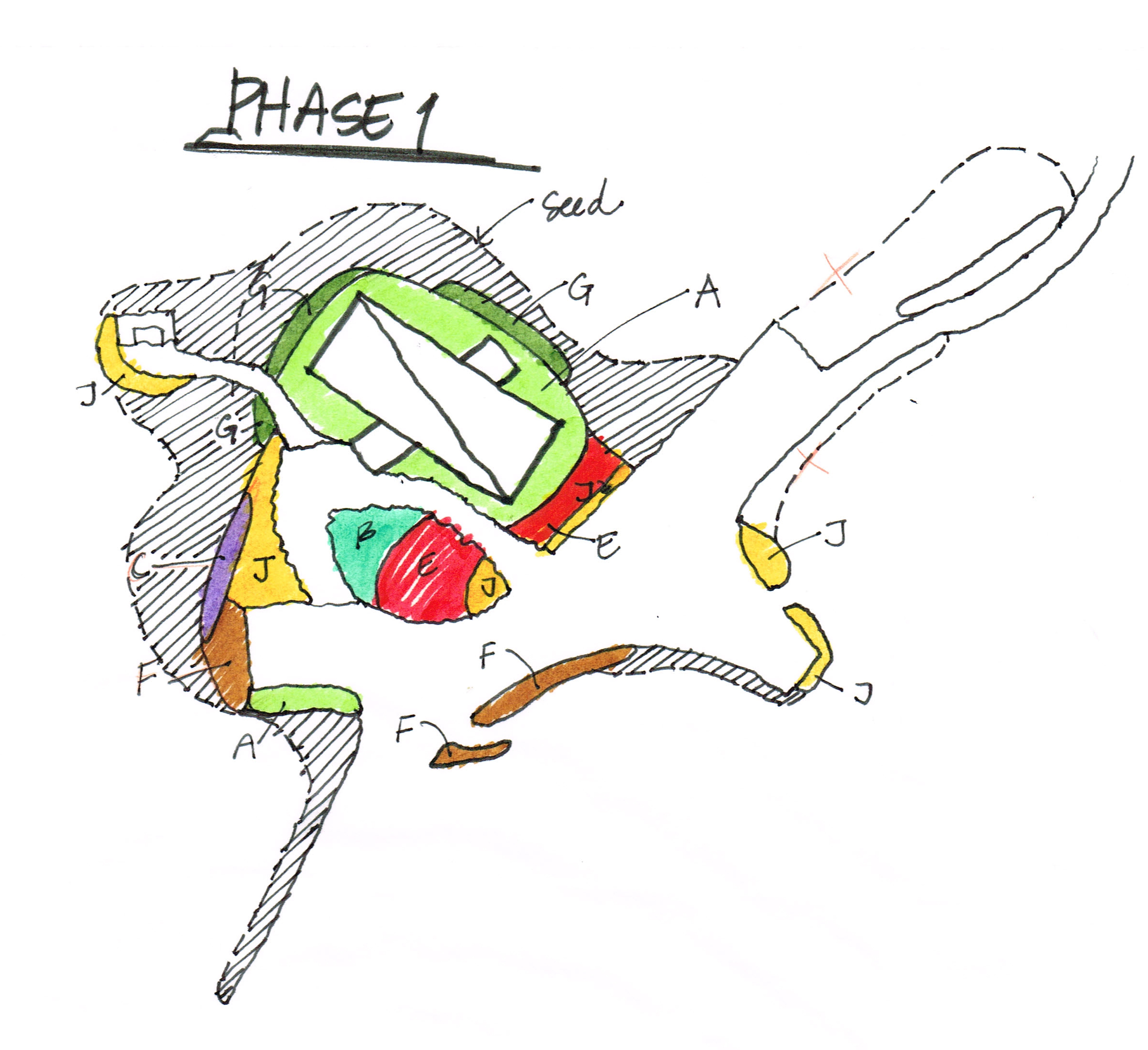 phase 1.jpg
